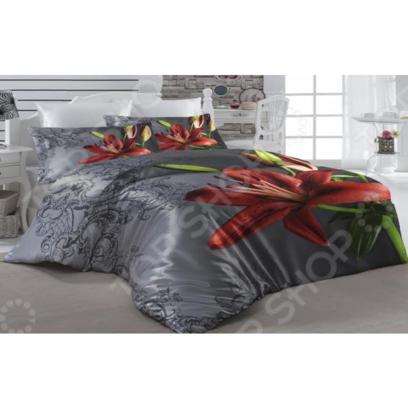 Комплект постельного белья ТамиТекс «Смоки»